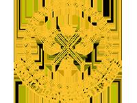 Associação Sul-Matogrossense de Calistenia Valhalla Calisthenics – MS